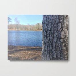 Oak Tree Trunk Next To Lake Abstract Metal Print
