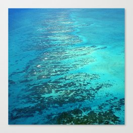 Breathtaking Reef in The Caribbean Area of Belize Canvas Print