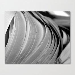 Paper Onion Canvas Print