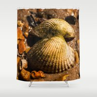 shells Shower Curtains featuring Shells by Wealie