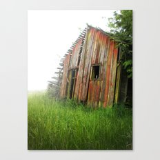 Red Shed Canvas Print