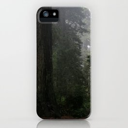 Before Beowulf iPhone Case