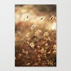 Fields Of Glory Canvas Print