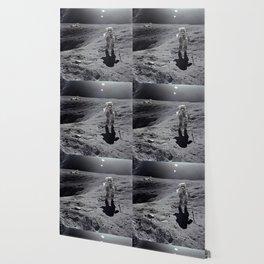 Apollo 16 - Plum Crater Wallpaper