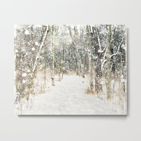 Winter Woods Metal Print