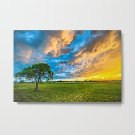 Fire and Ice - Lone Tree Under Colorful Storm Clouds at Sunset in Texas Metal Print