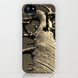 methuselah iPhone Case