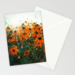 Bleached Stationery Cards