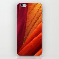 Like a Summer Dawn  iPhone & iPod Skin