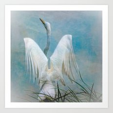 Egret Preparing to Launch Art Print