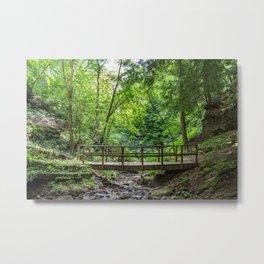 Raccoon - Wooden Bridge Metal Print
