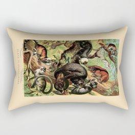 Vintage New World Monkeys Rectangular Pillow