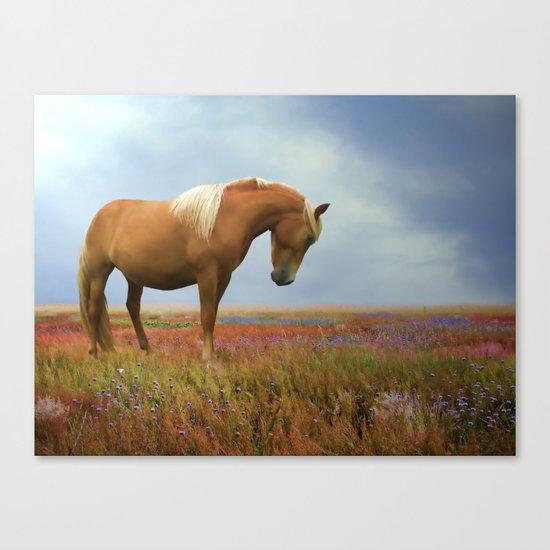 Painted Pastures Canvas Print