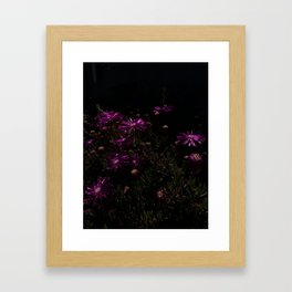 nighttime blooming Framed Art Print