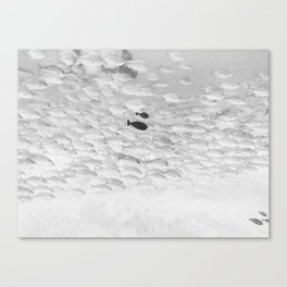 LOST in Society Canvas Print