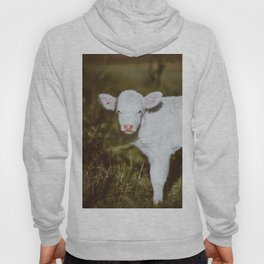White Calf (Color) Hoody