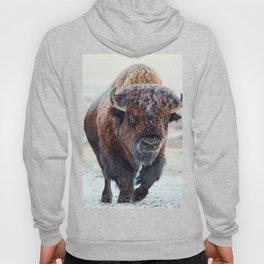 American Bison Hoody