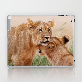Two young lions - Africa wildlife Laptop & iPad Skin