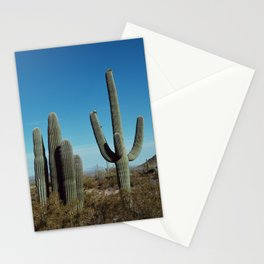 Arizona desert Stationery Cards