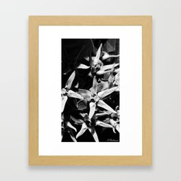 A beautiful cluster Framed Art Print
