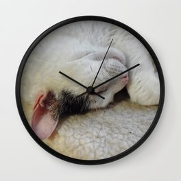 Cute Kitty Snoozes Softly Wall Clock