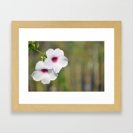 White and Pink Fine Art Photography Framed Art Print