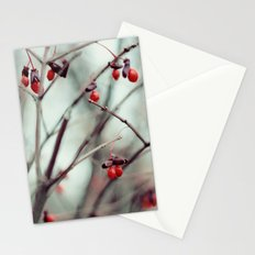 December Dream Stationery Cards