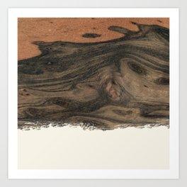 Dipped Wood - Birdseye Paldao Art Print