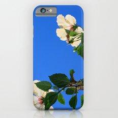 Summer Hibiscus iPhone 6s Slim Case