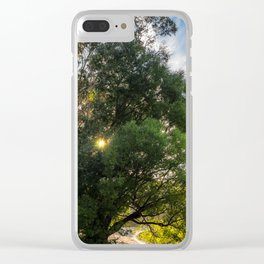 Sunstar behind some trees on the lake shore at Wilson Bay, New Zealand Clear iPhone Case