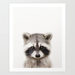 Baby Raccoon, Baby Animals Art Print By Synplus Art Print