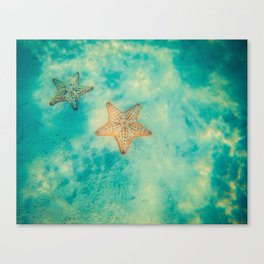 The star of the sea Canvas Print