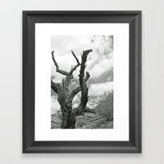 Desert Decay Framed Art Print