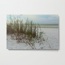 Along the Gulf Shore Metal Print