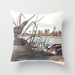 American snipe, Birds of America, Audubon Plate 243 Throw Pillow