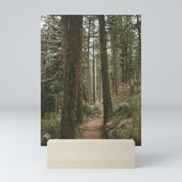 walk in the forest Mini Art Print