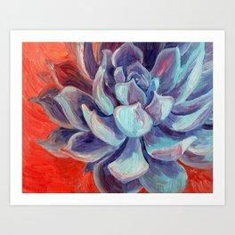 Succulent Echeveria Cactus, Scarlet Turquoise Purple Art Print