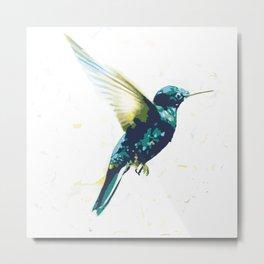 Flying colibri Metal Print