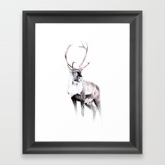 Caribou Framed Art Print