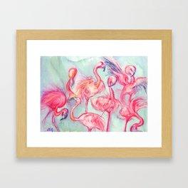 Flamingoes Dance Framed Art Print