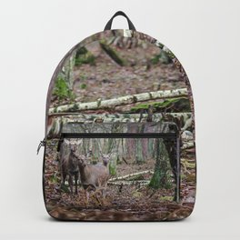 Noble family Backpack