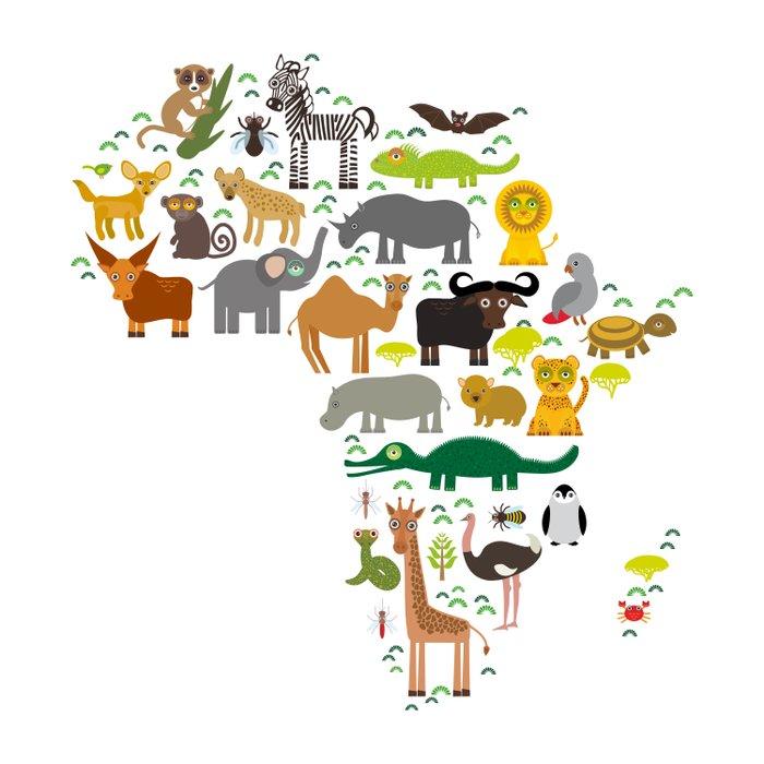 map of Africa: parrot Hyena Rhinoceros Zebra Hippopotamus Crocodile Turtle Elephant Mamba snake Duvet Cover