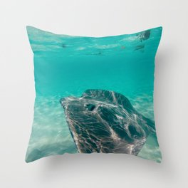 Sting Ray in Clear Water Throw Pillow