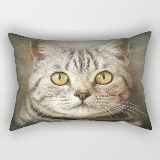 Tabby Cat Rectangular Pillow