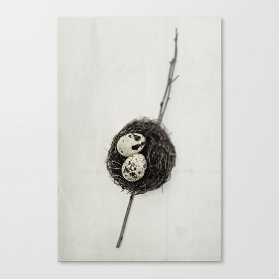 nest + speckled eggs | fig. o1 Canvas Print