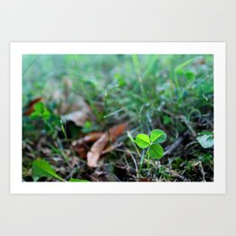 Lonely Clover Art Print