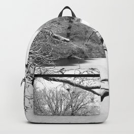 Snow in the park Backpack