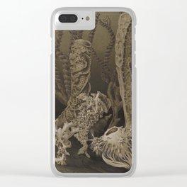 Vintage Sea Sponges Clear iPhone Case
