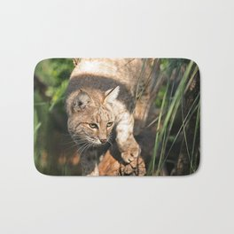 Texas Wildlife Image: Bobcat in the reeds Bath Mat