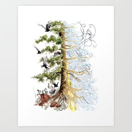 The Woods and The Water Art Print